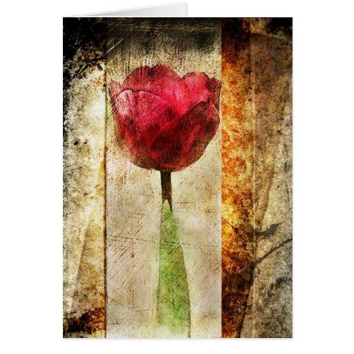 Rustic Tulip-Greeting Card Greeting Card