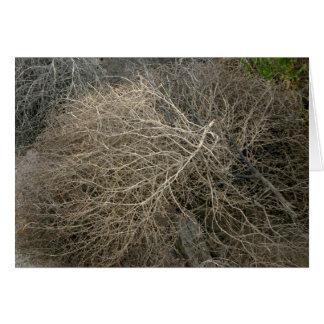 Rustic Tumbleweed Card