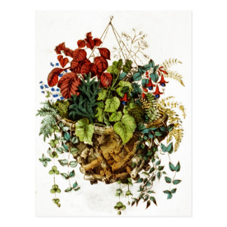Rustic twig basket with flowers and plants postcard