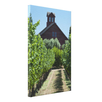 Rustic Vineyard and Red Barn Canvas Print