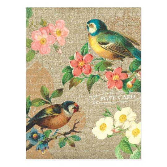 Rustic Vintage Birds and Flowers Shabby Elegance Postcard