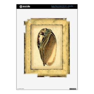 Rustic Vintage Seashell iPad 3 Skin