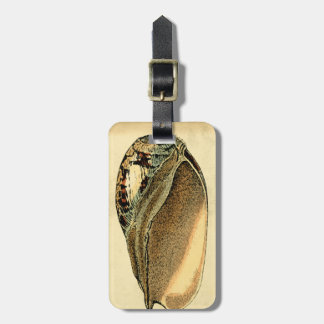 Rustic Vintage Seashell Tag For Luggage