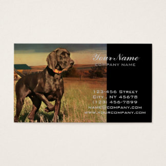 rustic western country farm labrador retriever business card