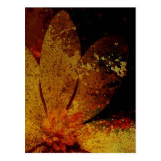 Rustic White Flower Postcard