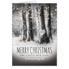 Rustic Winter Christmas, Robins & String Lights Cards
