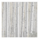 Rustic Winter White Birch Tree Forest Poster