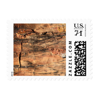 Rustic Wood Grain Postage Stamps