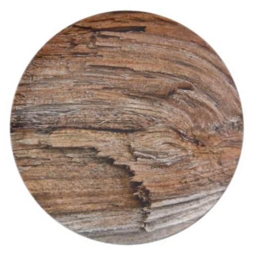 Rustic wood party plate