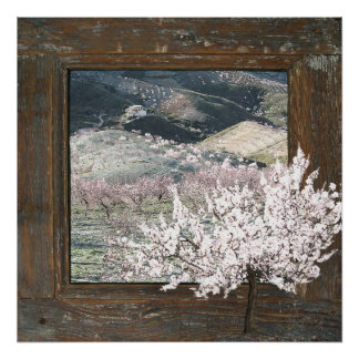 Rustic wood pink scenic blossom large poster print