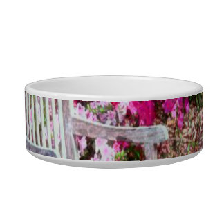 Rustic Wooden Bench In The Park Pet Food Bowls