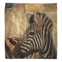 rustic woodgrain Africa safari animal  zebra Bandana