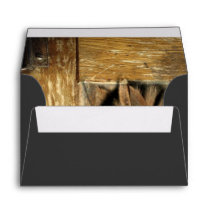 rustic woodgrain Africa safari animal  zebra Envelope