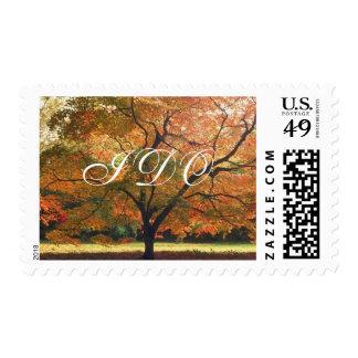 Rústico hago caída del boda del otoño que casa timbre postal