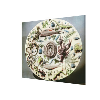 Rustique Figuline' dish with a white background Canvas Print