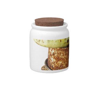 Rusty bollard isolated on white background candy jar