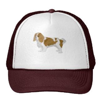 Rusty Trucker Hat