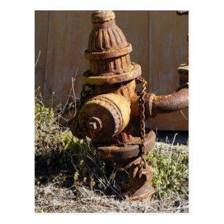 Rusty Hydrant Postcard