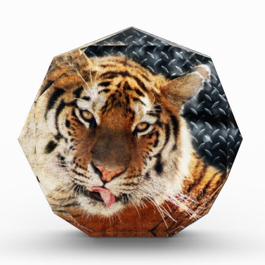 Rusty Metal Grunge Tiger Acrylic Award