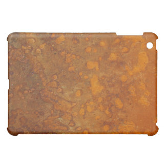 Rusty Orange Metal Texture 2 iPad Case