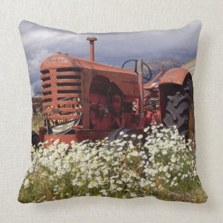 Rusty Red Vintage Tractor in Daisies Throw Pillow
