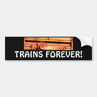 "Rusty rr train box car ""TRAINS FOREVER!"" Bumper Sticker"