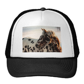 Rusty the Appaloosa Trucker Hat