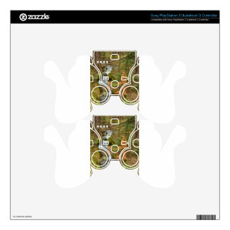 Rusty The Pine Tree and The Flowing Stream PS3 Controller Skin