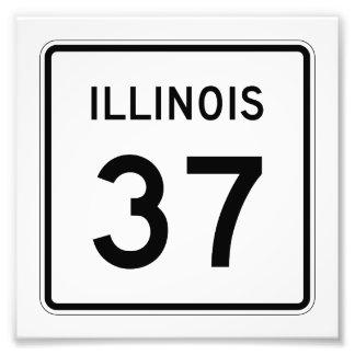Ruta 37 de Illinois Cojinete