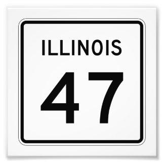 Ruta 47 de Illinois Fotografía