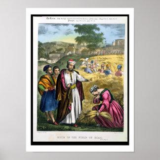 Ruth en el campo de Boaz, de una biblia impresa ce Póster