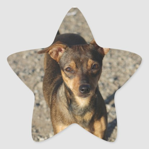 Ruthie de la esperanza pasada pegatina en forma de estrella