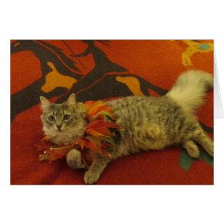 Ruthie the Cat Card