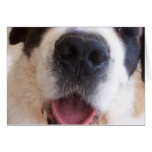Ruthie's Nose Greeting Card