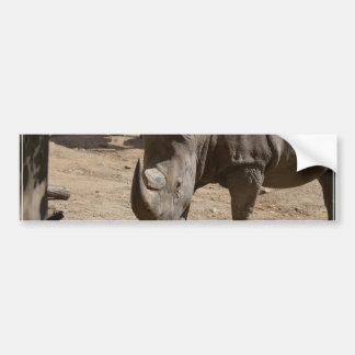 Rutting Rhino Bumper Sticker