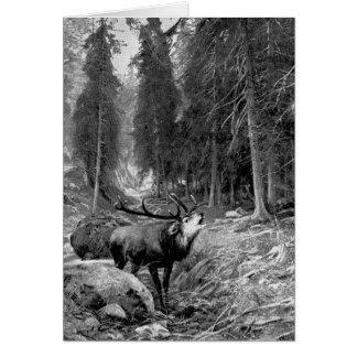 Rutting Stag Cards