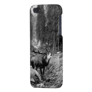 Rutting Stag iPhone SE/5/5s Case