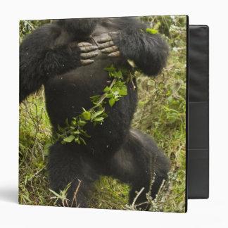 """Rwanda, parque nacional de los volcanes. Montaña Carpeta 1 1/2"""""""