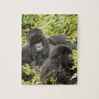 Rwanda, parque nacional de los volcanes. Montaña Rompecabeza Con Fotos