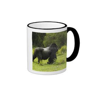 Rwanda, Volcanoes National Park. Mountain 2 Ringer Coffee Mug