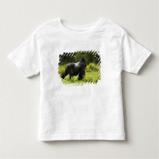 Rwanda, Volcanoes National Park. Mountain 2 Tee Shirt