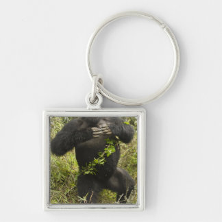Rwanda, Volcanoes National Park. Mountain Silver-Colored Square Keychain