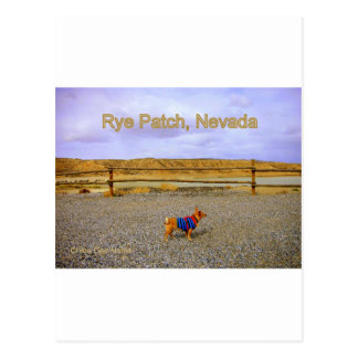Rye Patch, Nevada Postcard