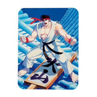 Ryu on Roof Flexible Magnets