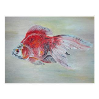 Ryukin Goldfish Postcard