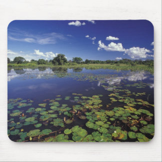 S.A., Brazil, Waterways in Pantanal Mouse Pad