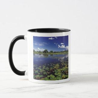 S.A., Brazil, Waterways in Pantanal Mug