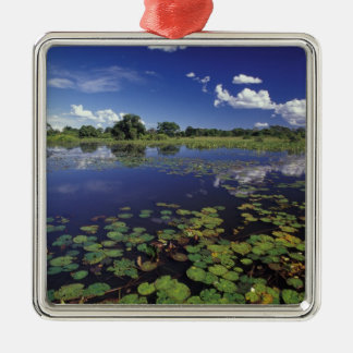 S.A., Brazil, Waterways in Pantanal Christmas Ornament