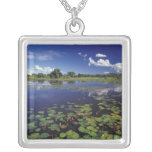 S.A., Brazil, Waterways in Pantanal Silver Plated Necklace