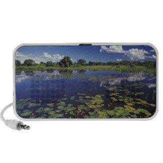 S.A., Brazil, Waterways in Pantanal Laptop Speakers
